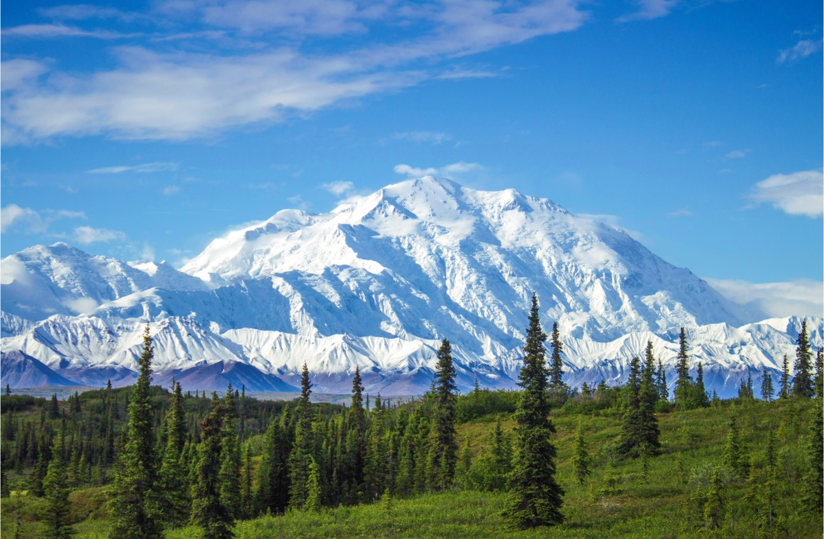 early morning view of mount denali