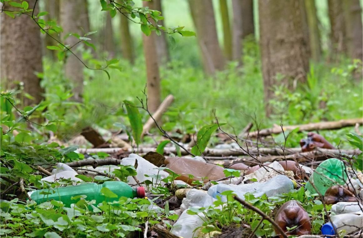 nature pollution of plastic bottles