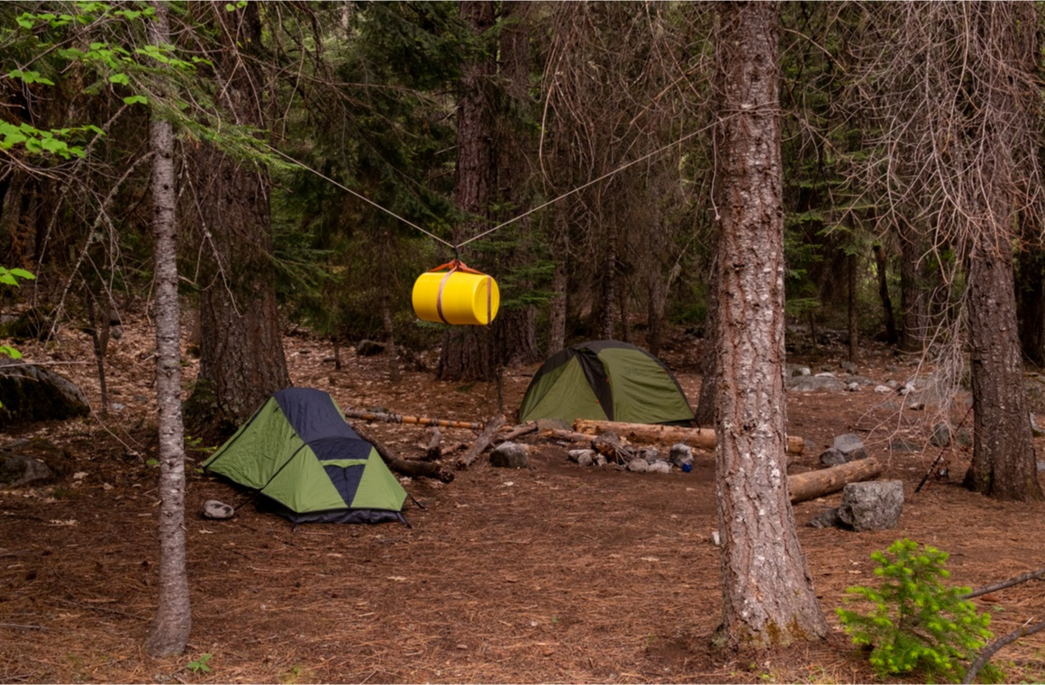 two tents camping in a pine terrain with a yellow bear proof