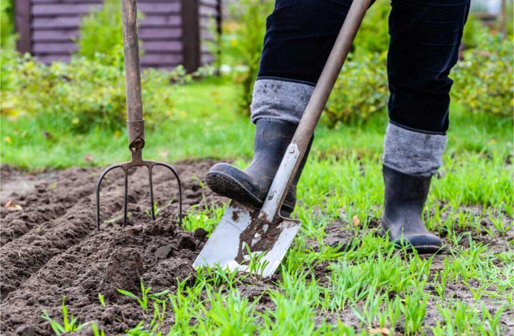 Gardener digging in the garden