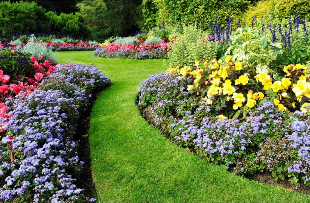 Scenic view colorful flowerbeds