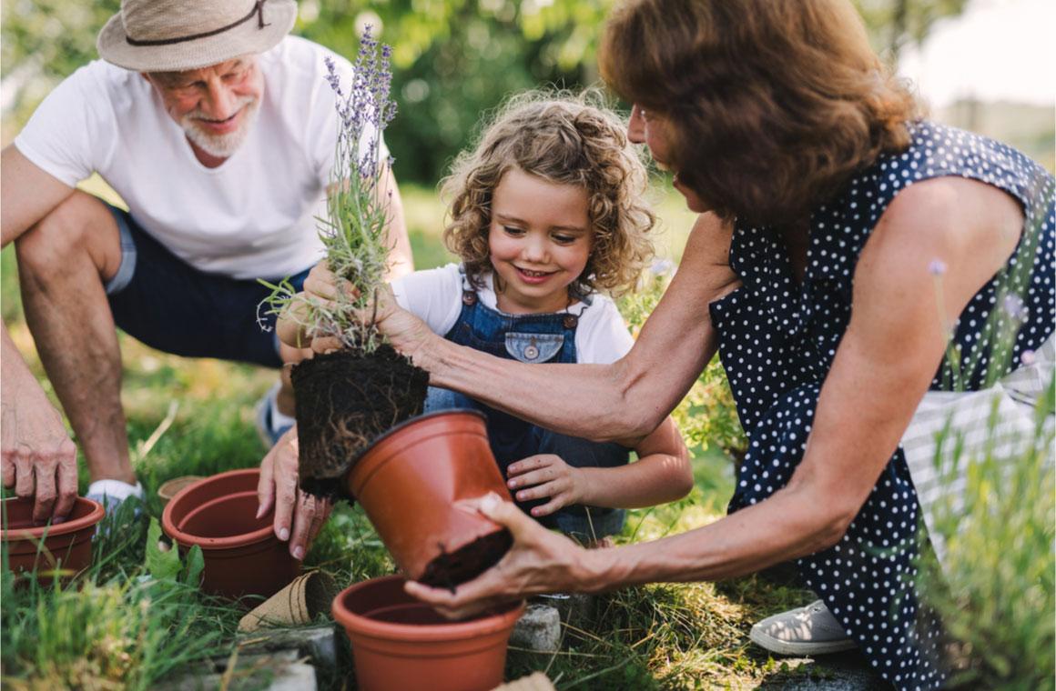 senior grandparents granddaughter gardening backyard